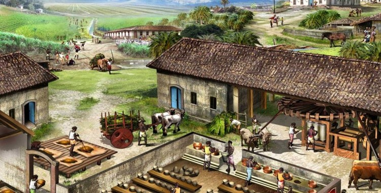 Repórter da História: O trabalho escravo na produção de açúcar
