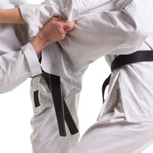 karate_300px